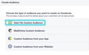 custom-audience-paso-2